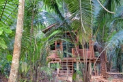 1.17 Acres With Small Cabana