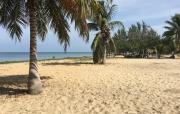 Best value in Placencia Beachfront