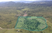 30 acre fruit farm with creek in Red Bank
