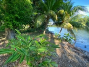 Sittee River Lots with Seller Financing