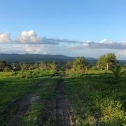 .25 acre lot on Bullet Tree Rd - San Ignacio, Cayo