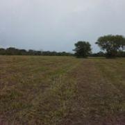 Misty Meadow Farms - Lot 2, one acre parcel - Cayo