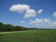 Misty Meadow Farms - Lot 3,one acre parcel - Cayo