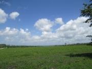 Misty Meadow Farms - Lot 17, five acre parcel - Cayo