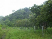 14.2 ACRES, Near Hummingbird Hwy, West Belmopan