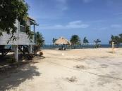 Leaning Palm a Beach Paradise