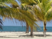Caribbean Sea Beach lot. Placencia Belize