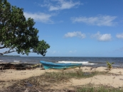 Great Sea View Lot in Riversdale