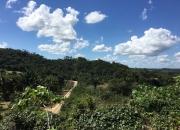 14 Acres east of Belmopan