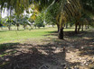 Affordable Beach View Lot in Malacate, Independence