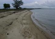 50 Acres of Beachfront