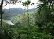 Own an affordable lot in Belize at a spectacular eco-community!