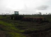 311 Acres land; Cayo District
