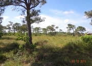 2.14 acres on Malacate road, Independence