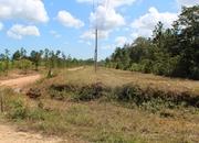 34 Acres in Hope Creek