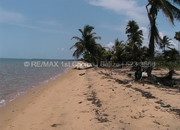 1.5 Acres of Pristine Beachfront Property Located Near Gales Point with a All Weather Road and Gated Subdivision