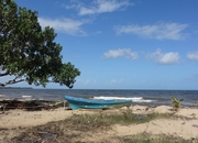 Large Sea View Lot in Riversdale