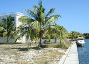 Water Front Lot in Wild Orchid