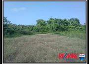Sittee River Lot - 1 Sold, 1 Under Contract