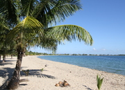 Amazing Beach Front Condo.Priced to Sell !