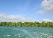 Two 2.20 Acres Waterfront Lots, Four Mile Lagoon, Corozal District, Belize