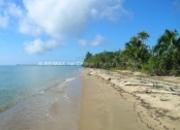 5 Beachfront Lots in Punta Negra, Toledo, Belize