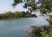 Waterfront Lot in Mango Creek